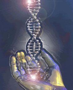mãos curando DNA